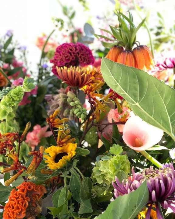 bloemen laten bezorgen Pluk n Bloom