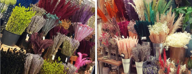 Droogbloemen kopen? | Kom naar Pluk n Bloom voor een prachtig boeket | Pluk 'n Bloom