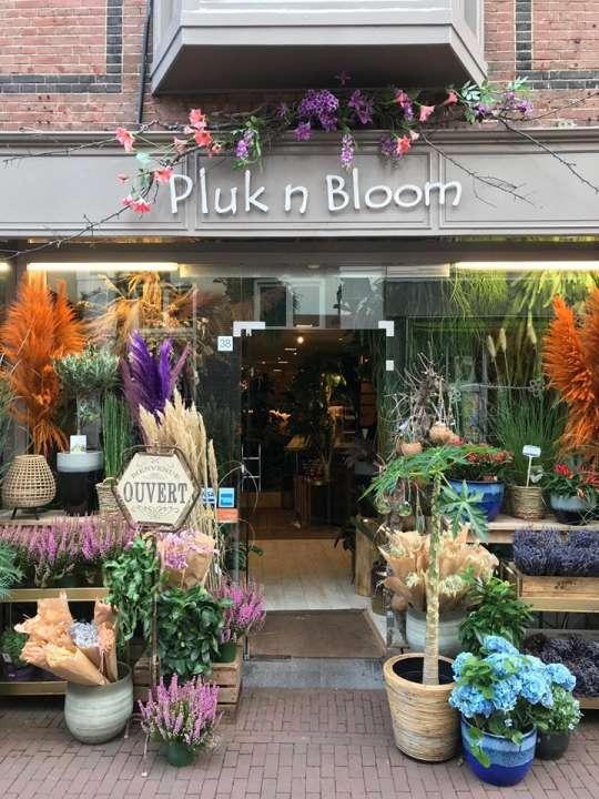 Pluk n Bloom winkel