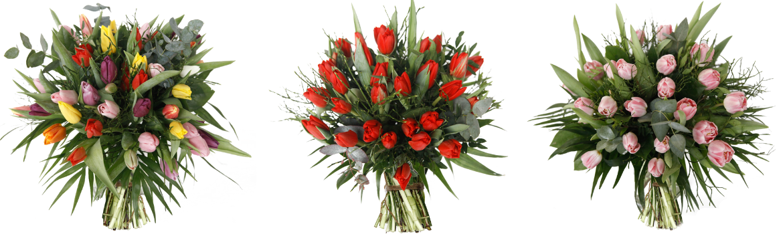 Tulpen boeketten bij Pluk n Bloom