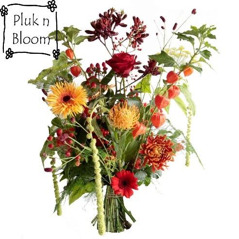 PluknBloom veldboeketten in vrolijke kleuren