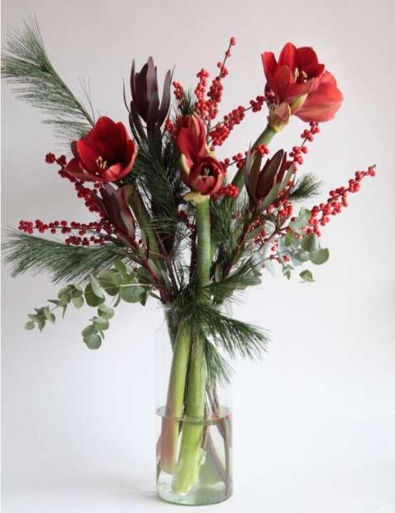Winterboeket met Amaryllis Pluk en Bloom